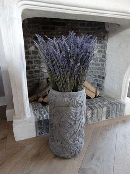 Afbeeldingen van Gedroogde bos lavendel