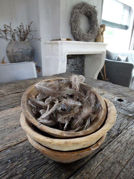 Afbeelding van Veren bruin/grijs als decoratie