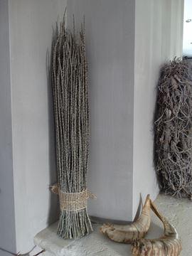 Afbeeldingen van Acai takken als decoratie