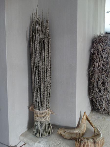 Afbeelding van Acai takken als decoratie