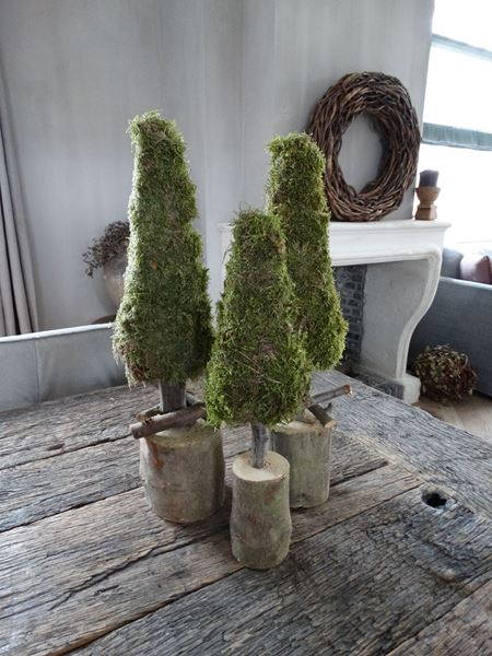 Afbeelding van Kerstboom mos 38 cm