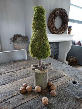 Afbeeldingen van Kerstboom mos 50 cm