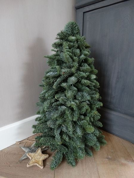 Afbeelding van Nobilis kerstboompje 50 cm