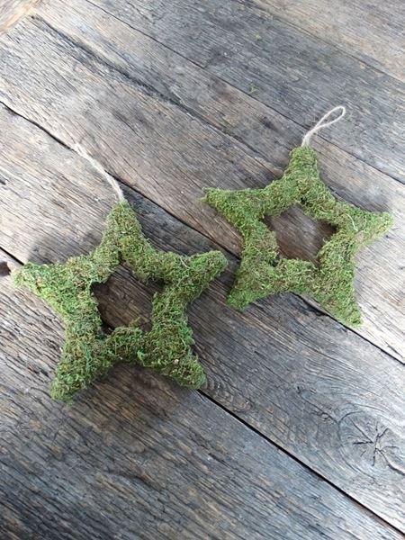Afbeelding van Hangende mos ster