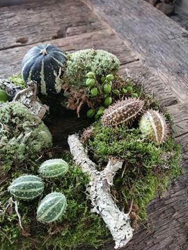 Afbeeldingen van Herfstkrans pompoen 30 cm