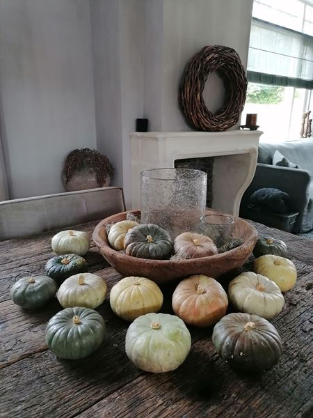 Afbeelding van Stoer & Stijlvol decoratie pompoenen